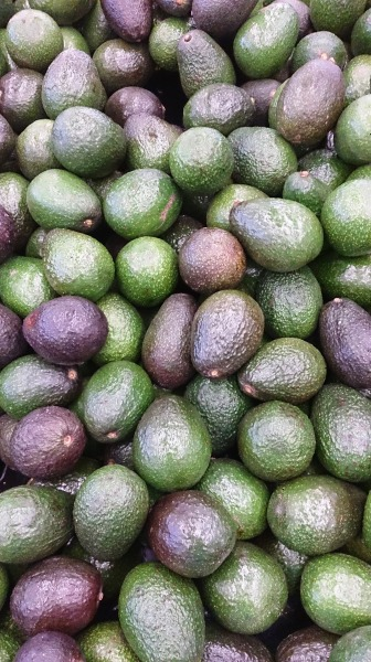 Nice_Avocados